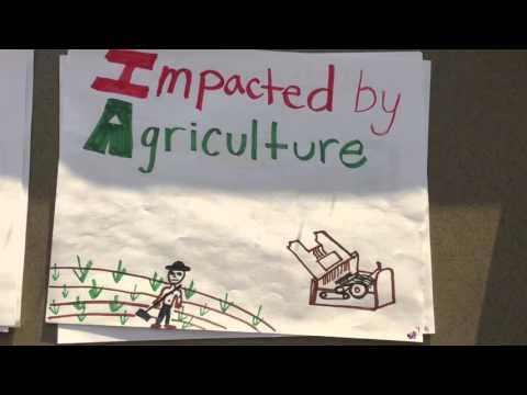 Industrialization:Interchangeable Parts-Eli Whitney (Riley, Raya, Rebekah)