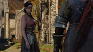 Ведьмак 3 Дикая Охота - Дела государственной важности. Убийство Радовида