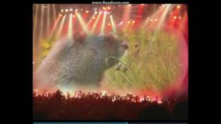 как пользоваться программой Wondershare Video Editor