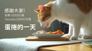 【好味小姐】粉專10萬大感謝~蛋捲的一天! thumbnail
