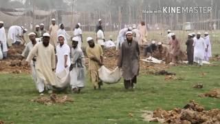 tariq jameel tablighi jamaat