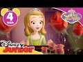 Sofia the First | Mr P | Disney Junior UK