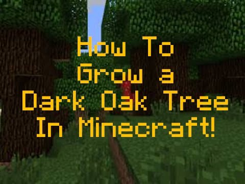 minecraft how to make tree grow branches