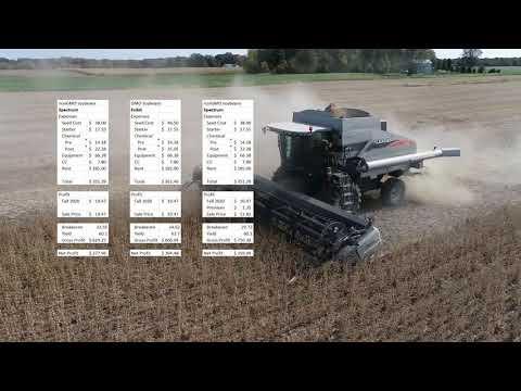 Profitability of GMO vs nonGMO soybeans
