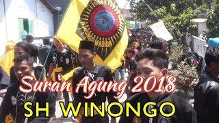 Madiun - Ribuan Pendekar SH WINONGO Hadiri Suran Agung 2018
