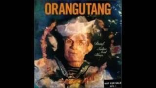 Orangutang - Surf Continental