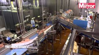 What's inside a McDonalds McRib? See behind the scenes at fast food giant's meat factory