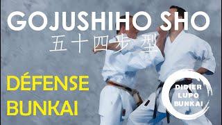 Gojushiho Sho Bunkaï Défense par Didier Lupo