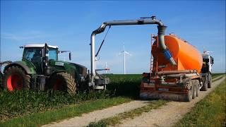 Agriculture: Gülleausbringung in Maisbestand! Juni 2017