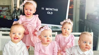 Our Quints Are 11 Months Old! - Little Grandma's Birthday - Wedding Photos