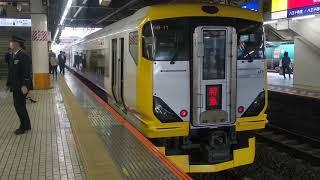 E257系500番台 5両編成 臨時特急 富士回遊90号 八王子駅発着 2020.03.11
