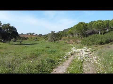 Vale de Carros, Bensafrim