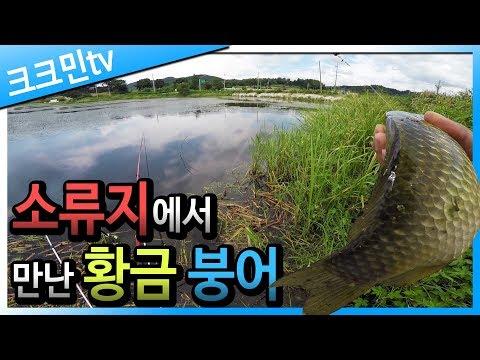 소류지 붕어낚시 / 옥수수 / 원봉돌 / 남원