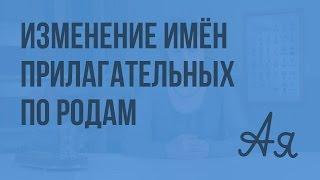 Изменение имён прилагательных по родам. Видеоурок  по русскому языку 3  класс
