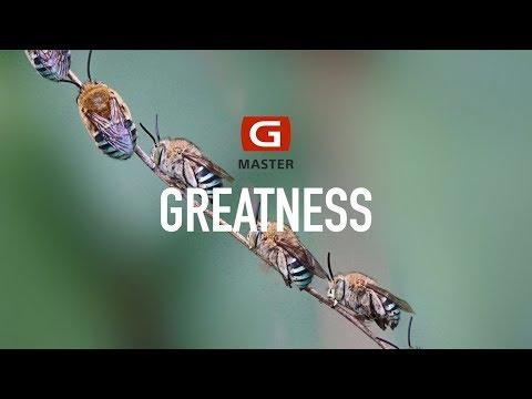 Aspiring Greatness    Rinto Adhitama