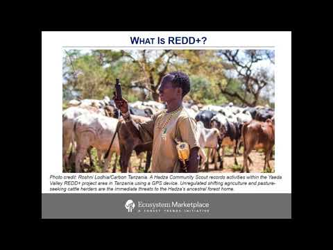 2017 12 12 12 02 State of Forest Carbon Finance  REDD  Projects into Programs