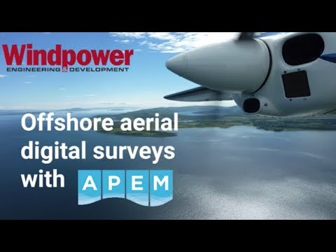 Offshore aerial digital surveys