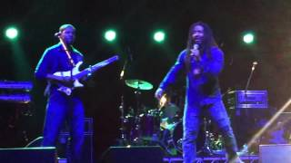 The Wailers - Is This Love (Bluesfest 2016) HD 1080p