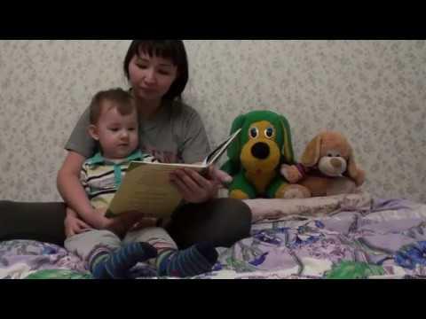 Изображение предпросмотра прочтения – АйнаБорисова читает отрывок изпроизведения «Тараканище» К.И.Чуковского