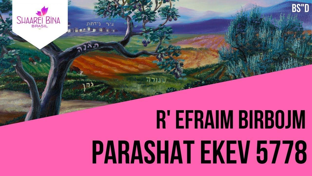 Parashat Ekev 5778 - R' Efraim Birbojm - Shaarei Biná Brasil