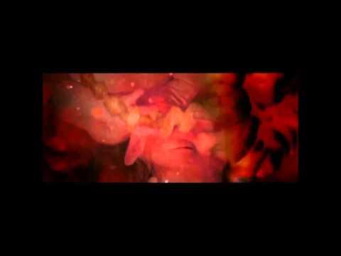 Melanin Explained (clip from Hidden colors 2)