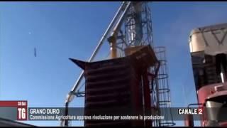 TG CANALE 2_GRANO DURO: COMMISSIONE AGRICOLTURA APPROVA RISOLUZIONE PER SOSTENERE LA PRODUZIONE