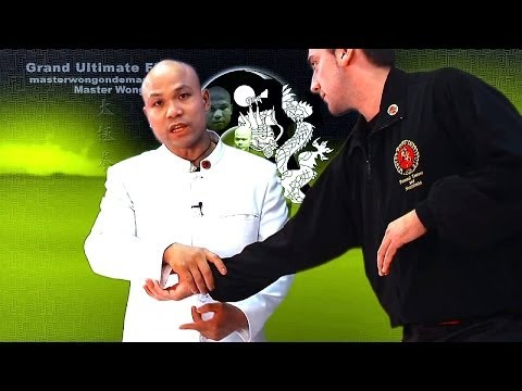 Tai Chi combat tai chi chuan fight style use tai chi - upcoming lessons
