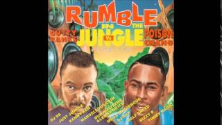 09. Poison Chang - Over You Body (Dub Hustlers & L. De Ice Rmx) JFCD 002 (Jungle Fashion Recs) 1995