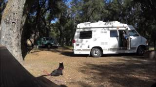 Dry Canyon Camping in Cuyama Valley, CA
