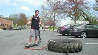 Lessons in Tire Training - Better than the Prowler Push