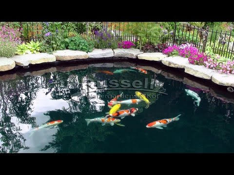How to build a bubble less koi pond time lapse in slide for Koi pond bubble