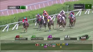 Vidéo de la course PMU PREMIO TIANICA