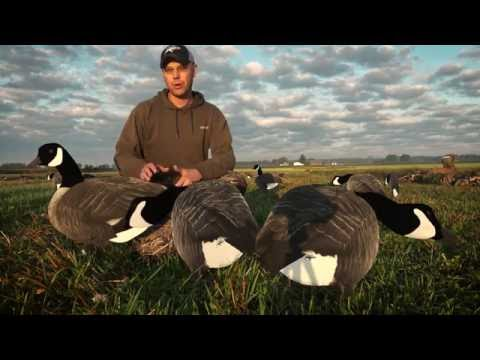 Flocked Head Canada Goose Silhouette Decoys - Product Preview