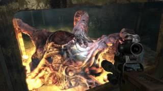 """""""Metro 2033"""", HD walkthrough (Ranger Hardcore), Chapter 6: D6 (Part 5 - Biomass)"""
