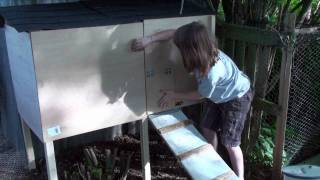 How To Build A Henhouse For Under $150 And In Under 3 Hours