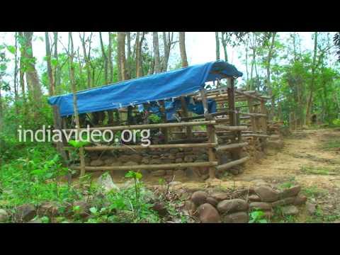 Graveyard in Naga Village, Nagaland