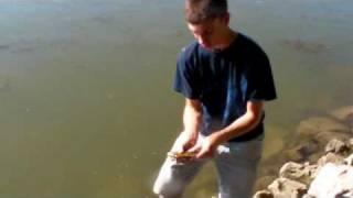 Smashing Spawning Bluegill-Fishing and Fun With JFick-Ohio Outdoors