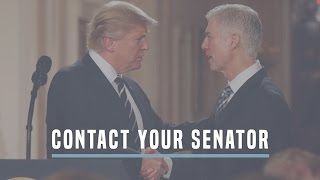 Commit To An Up-Or-Down Vote In The Full Senate On Judge Gorsuch