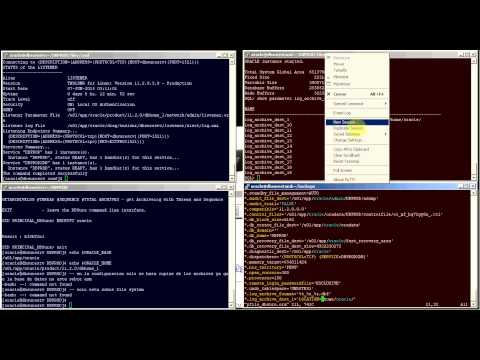 DBSure - Oracle Standby 11g Standby Standard Edition  on Linux 6