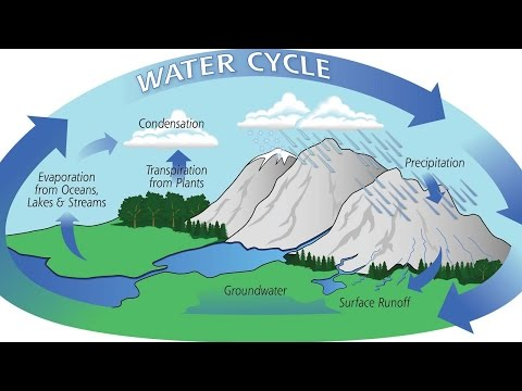 Physical Geology - External and Internal Processes