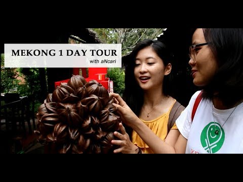 MEKONG DELTA: 1-day tour Ft. aNcari Room