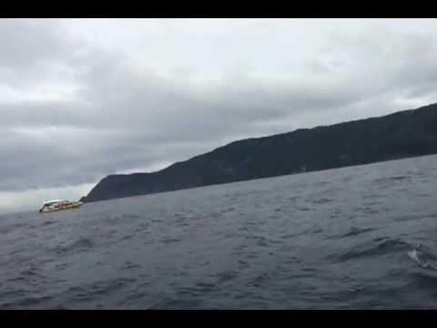 Bruny Island - Hobart, Tasmania - Boat tour