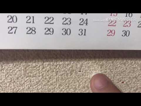 「歯磨き粉のライフハック」の参照動画