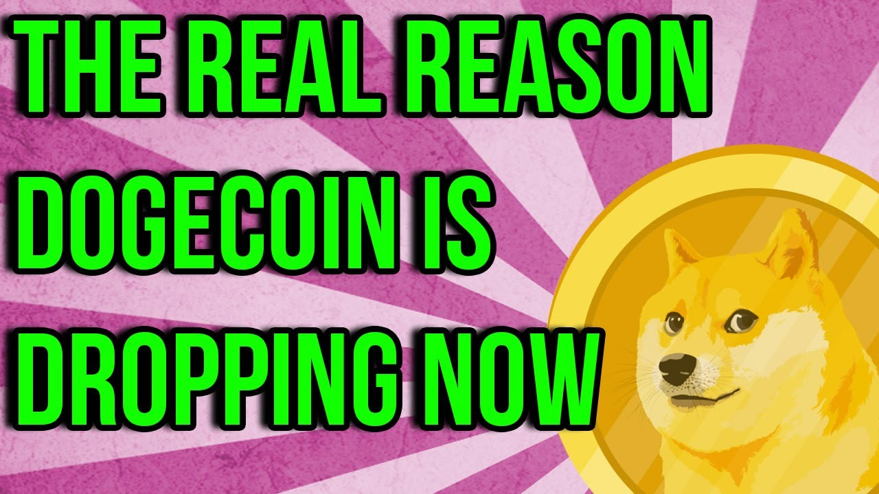WHY DOGECOIN IS DROPPING RIGHT NOW! DOGE HOLDERS NEED TO ...
