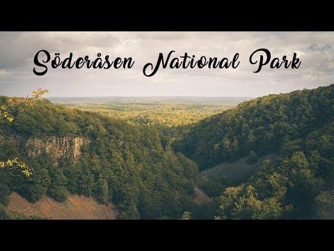 Söderåsen National Park In 1 Minute | Trip