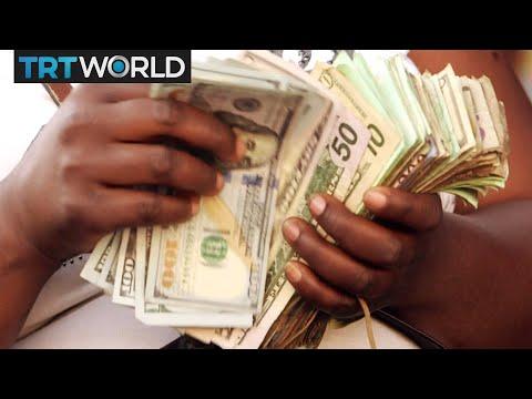 Zimbabwe's Currency Crisis