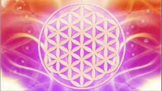 Unified Heart Merkaba Activation and 08-08 Gateway of Light