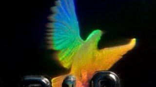 How Do Holograms Work?