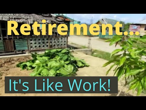 I'm supposed to be Retired! Life in the Philippines - vlog #45