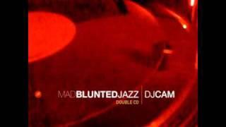 DJ Cam - Pure Pleasure